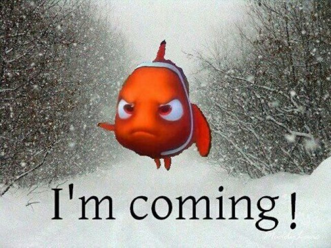 "Pixar: ""Finding Nemo"" Has a Sequel"