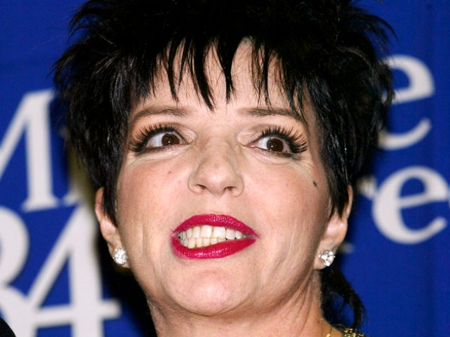 Liza Minnelli To Undergo Knee Replacement Surgery, Missing Grammy Awards