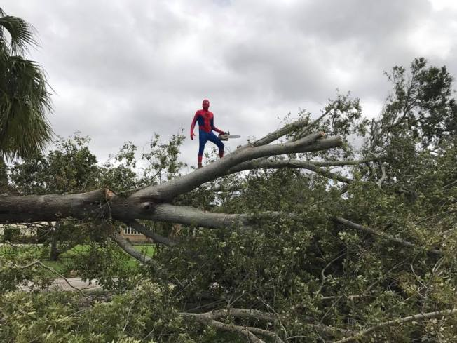 Chainsaw-Wielding Spider-Man Social Media Hero Of Hurricane Irma