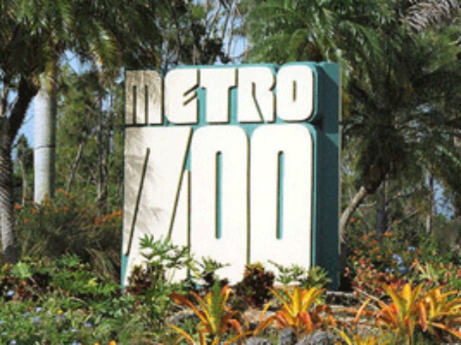 Fur Real: Miami MetroZoo Changing Name After 30 Years