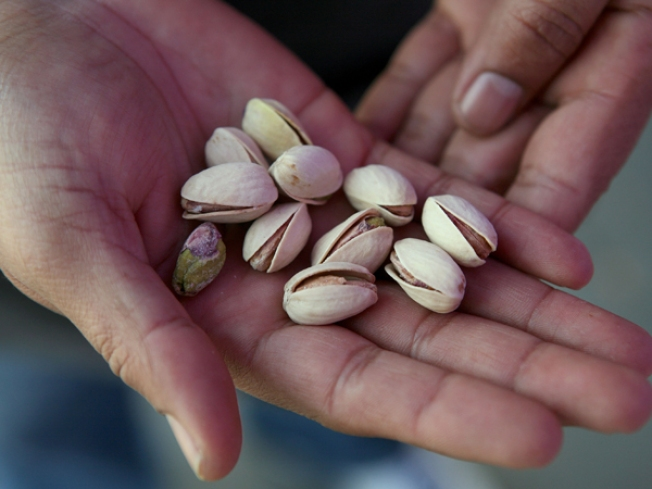 Woman Hid Cocaine in Kidney Beans, Nuts