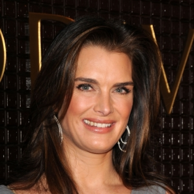 Brooke Shields On The Future Of 'Lipstick Jungle': 'We Got The Most Out Of It Possible'