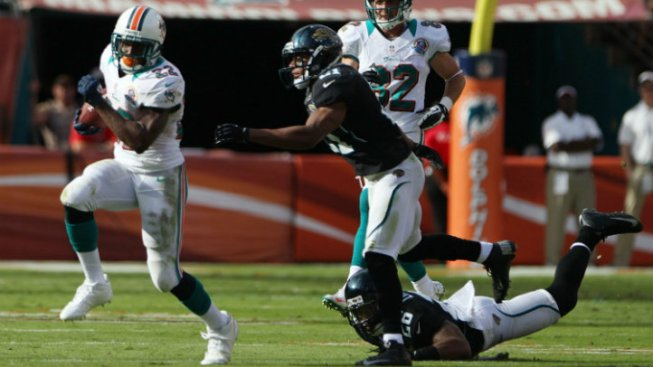 Miami Dolphins Will Try to Re-Sign Reggie Bush: Report