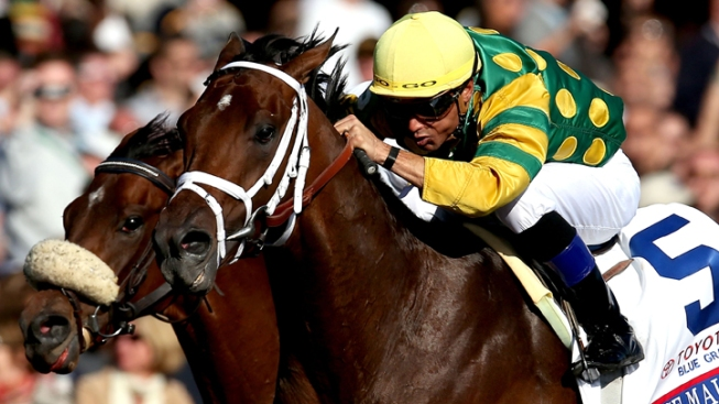 Belmont Stakes Contenders Hit the Track