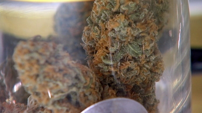 Florida Medical Marijuana Supporters Claim Victory