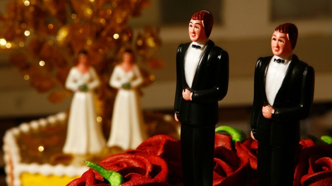 Florida Could Get $182 Million From Same-Sex Marriages: Study