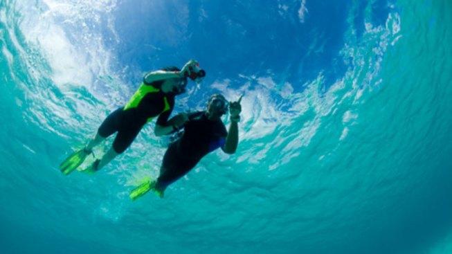 2 Snorkelers Die in Fla. Keys, Autopsies Scheduled
