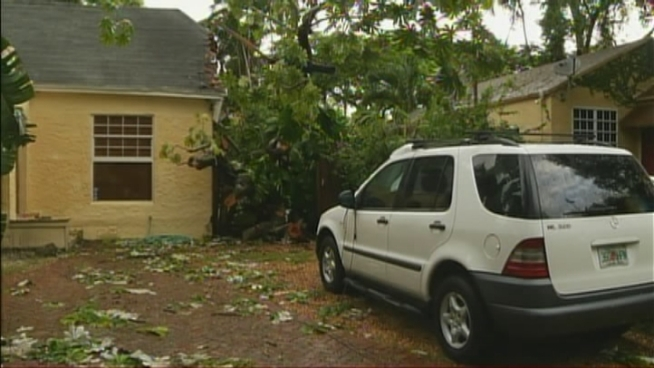A tree slammed into a home and a man's car wheile he was on his way to work in South Miami Monday in the wake of Tropical Storm Isaac.