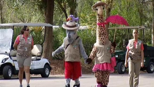 Kids at Zoo Miami met new mascots like Kaz the rhino and Gigi the giraffe.